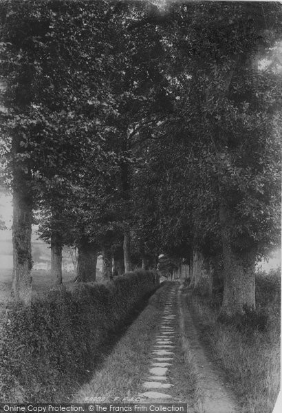 Bridport, Lover's Grove 1897