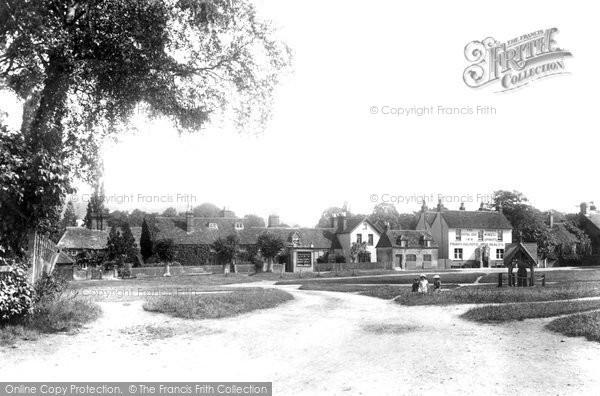 Brockham, The Village Green 1904