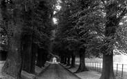 Bromley, Palace Park 1899