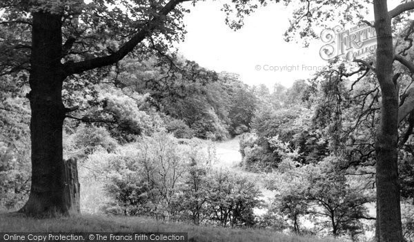Bromsgrove, Dodderhill Common c.1955