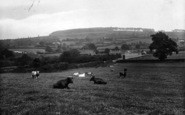 Bromyard, The Downs 1923