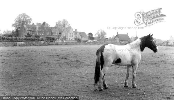 Buckland, c.1965