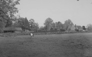 Buckland, General View c.1965
