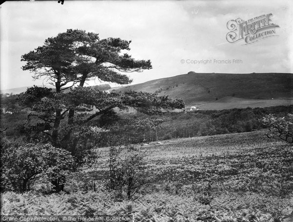 Buckland In The Moor, Beacon From Ashburton Road 1931