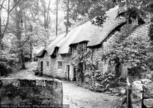 Buckland In The Moor, Village 1890