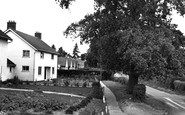 Bucklesham, Levington Lane c.1960