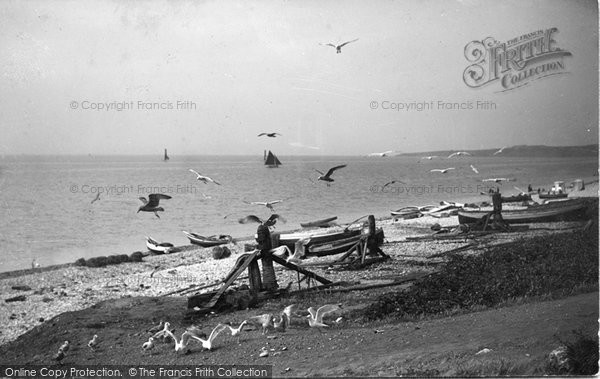 Budleigh Salterton, Beach And Gulls 1906