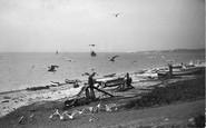 Budleigh Salterton, Beach And Gulls 1906