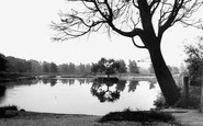 Burgh Heath, The Pond c.1960