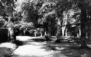 Burley, Beechwood c.1955