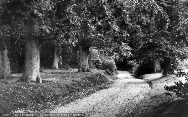 Burley, Rockpit c.1955