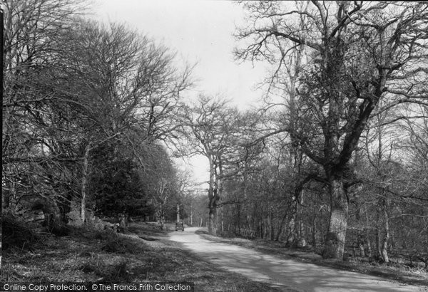 Burley, The New Forest c.1955
