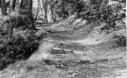 Burley Woodhead, c.1955