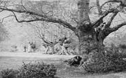Burnham, Beeches c.1890