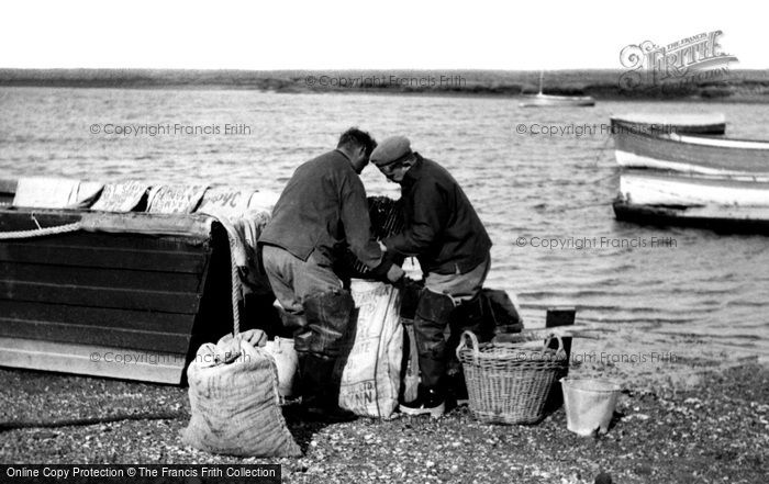 Burnham Overy Staithe, Packing Mussels c.1955