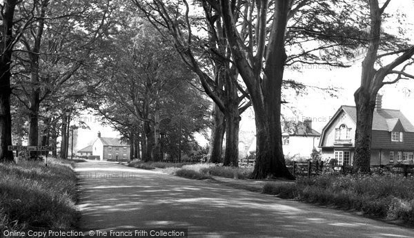 Burton Upon Stather, The Avenue c.1955