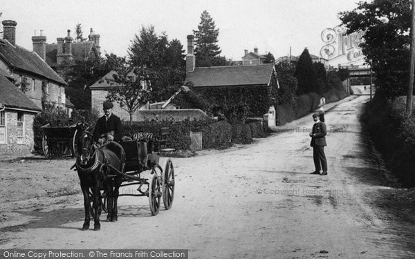 Buxted, Horse And Trap In The Village 1904