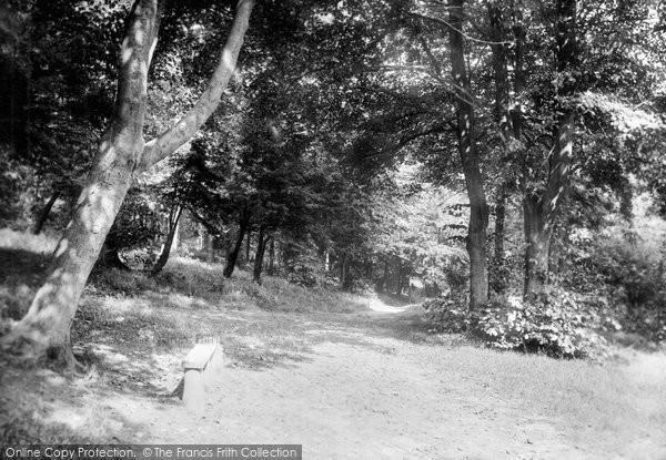 Buxton, In Corbar Woods 1915
