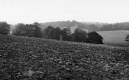 Cawthorne, Cannon Hall From The Park c.1955