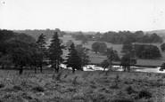 Cawthorne, Cannon Hall Park c.1955