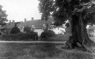 Cleeve Prior, The Old Elm 1901