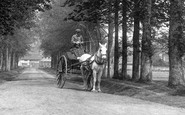 Compton, Horse And Cart, The Avenue 1907