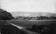 Dorking, From Glory Woods 1890