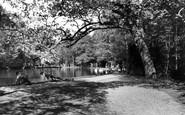 Enfield, Whitewebbs Park c.1955