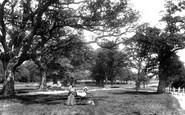 Frimley, The Grove 1906