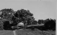 Hornchurch, Elm Park c.1955