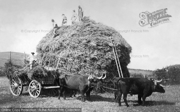 Jevington, Building A Cornstack 1888