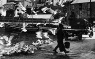 Mevagissey, Fisherman And Seagulls 1930