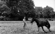 Newmarket, Breaking In A Two Year Old c.1960