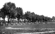 Photo of Newmarket, Horses at Exercise 1922