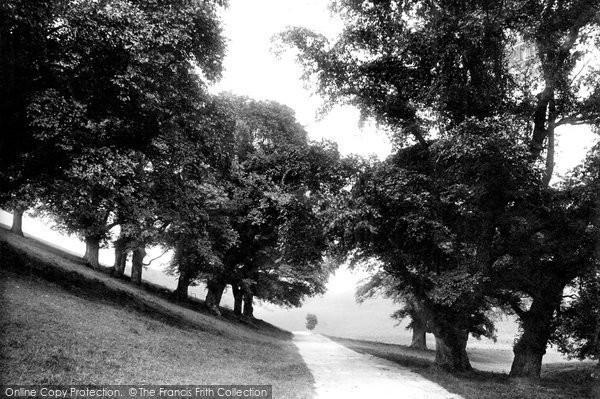 Old Hunstanton, Old Elms, Ringstead Downs 1896