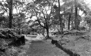 Ormskirk, Ruff Wood c.1955
