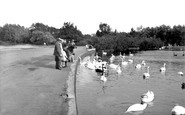 Poole, The Park Lake 1931