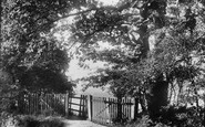 Redhill, Hooley Lane 1906
