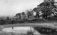 Redhill, View On The Common 1895