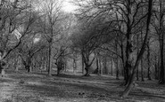 Sanderstead, The Beeches c.1965