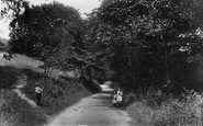 Shere, Combe Bottom Lane 1903