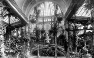 Somerleyton, Somerleyton Hall, Winter Garden 1891