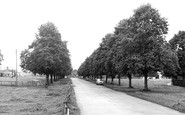 St Boswells, The Avenue c.1955