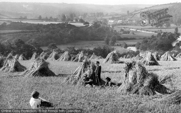 Weare Giffard, The Harvest Field 1890