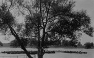 Welling, The Lake, Danson Park c.1950