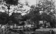 Wellingborough, The Zoo Park c.1965