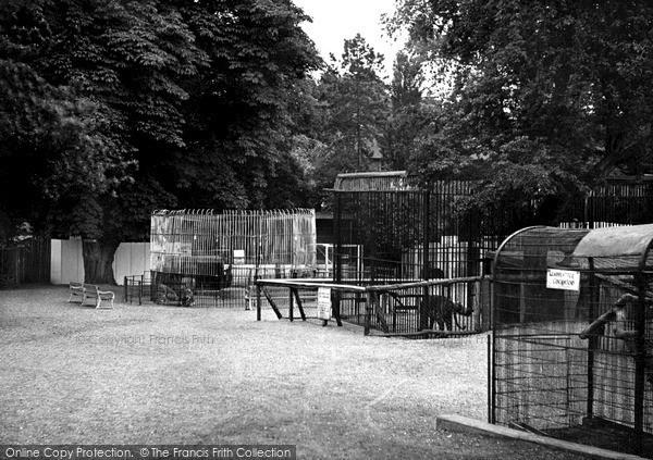Wellingborough, Zoo Park c.1950