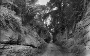 Photo of Wellington, Nynehead Hollow 1925