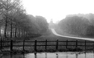 Windsor, Great Park, Long Walk And Statue 1895