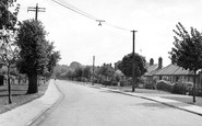 Photo of Witham, the Avenue c1950